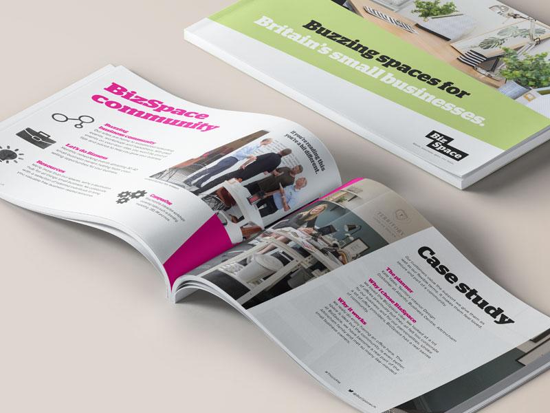 BizSpace sales brochure
